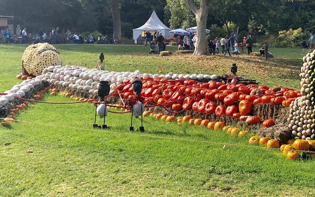 giant pumpkin man ludwigsburg pumpkin festival 2019